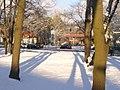 Dahlem - Clay-Allee - geo.hlipp.de - 32895.jpg
