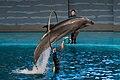 Dalian Liaoning China Laohutan-Ocean-Park-07b.jpg