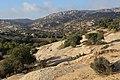 Dana Nature - panoramio (7).jpg