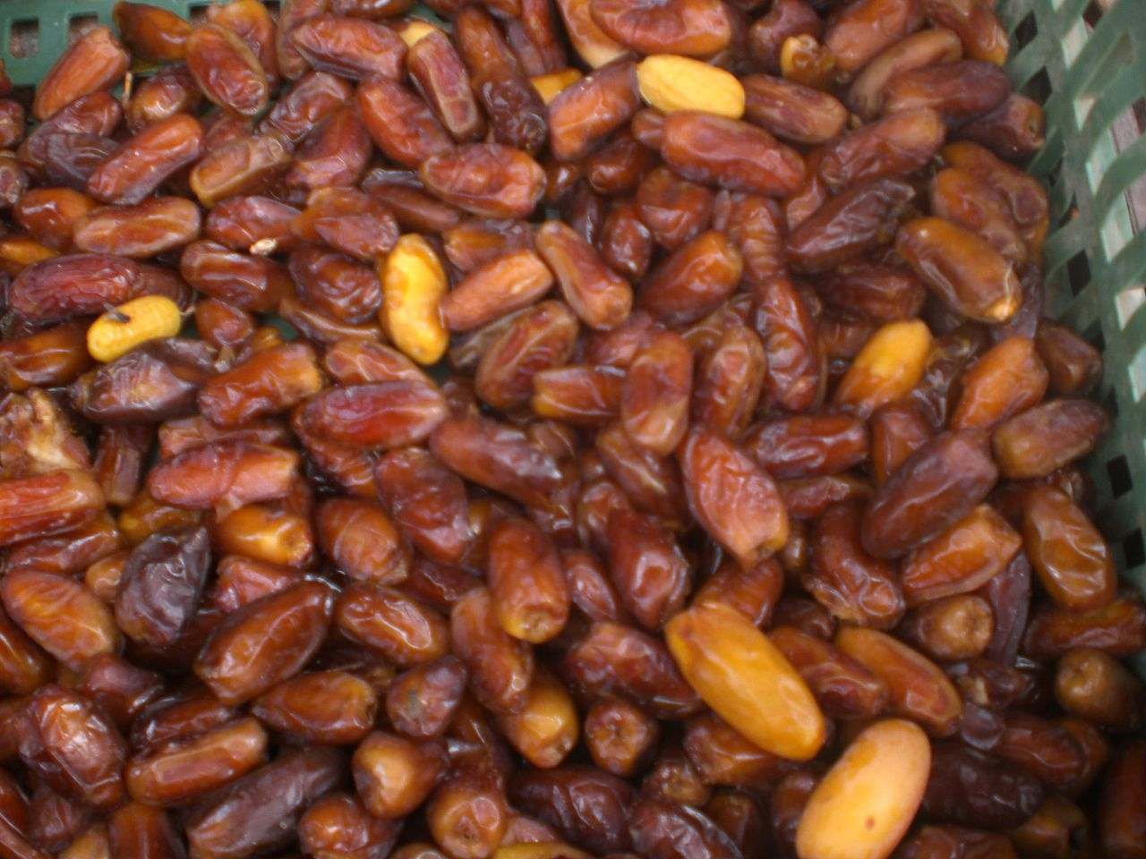 Traditional Bahraini Food Recipes