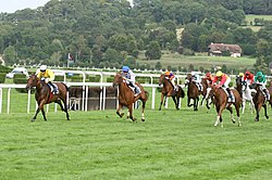 Deauville-Clairefontaine galop 2.jpg