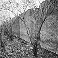 Deel van achterzijde fruitmuur (retranchementmuur) - 's-Gravenhage - 20407737 - RCE.jpg