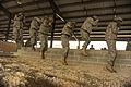 Defense.gov photo essay 090825-F-4684K-160.jpg
