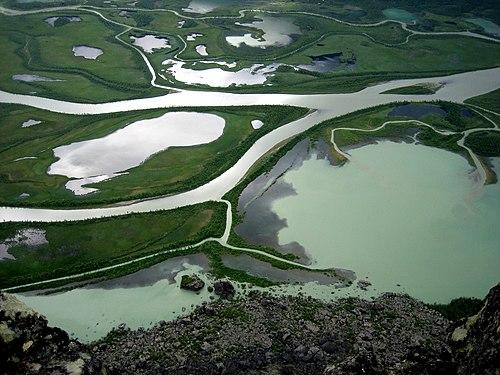 Delta in Rapadalen