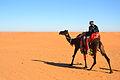 Desert (6486189427).jpg