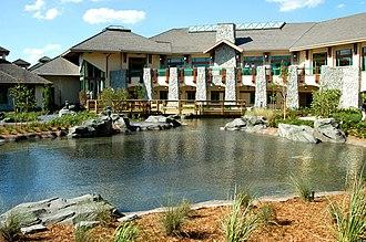 Magic Kingdom Resort Area - Shades of Green Resort