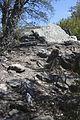 Dolmen des collets de Cotlliure01.jpg