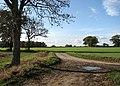 Dove Lane meets Leavy Oak Lane - geograph.org.uk - 1565499.jpg