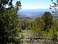 Down through the trees accross Davis Meadows to Truckee - panoramio.jpg