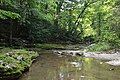 Downstream on McCormick's Creek.jpg