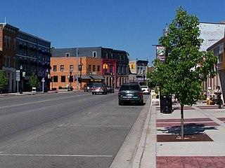 Williamston, Michigan City in Michigan, United States