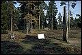 Dr360 Björketorpsmonumentet, Björketorpsstenen - KMB - 16000300013384.jpg
