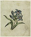 Drawing, Woodblock Trial Proof for a Printed Textile, 1780–90 (CH 18167679).jpg
