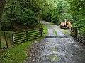 Drive up to Nantllyndir - geograph.org.uk - 937949.jpg