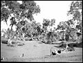 Dry creek bed at Ernabella, South Australia, 1949 (transparency) - (7974540442).jpg