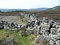 Dry stone wall junction - geograph.org.uk - 798307.jpg
