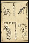 Early C20 Chinese Lithograph; 'Fan' diseases Wellcome L0039477.jpg