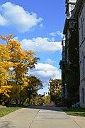 Eastside, Syracuse, NY, USA - panoramio (33).jpg