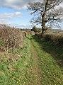Easy walking - geograph.org.uk - 1186004.jpg