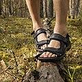 Ecco sandaalid.jpg
