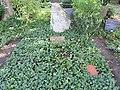 Ehrengrab Bergstr 38 (Stegl) Eduard Seler.jpg