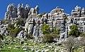 El Torcal - panoramio.jpg