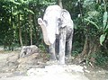 Elephant in Zoo Negara Malaysia.jpg