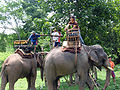 Elephant ride in Chiang Rai Province 2007-05 16.JPG