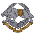 Emblem of the Ukrainian special forces.png