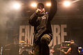 Emmure With Full Force 2014 06.jpg
