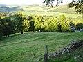 Empty field. Stobo Castle - geograph.org.uk - 235948.jpg