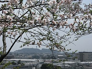 Enoshima view from Iseyama.jpg