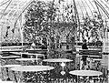 ErfgoedLeiden LEI001014797 Kas met Victoria Regia in de Hortus Botanicus.jpeg