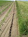 Erosion Furchen011.jpg
