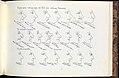 Essais d'autographie- Essai de physiognomie MET DP242863.jpg