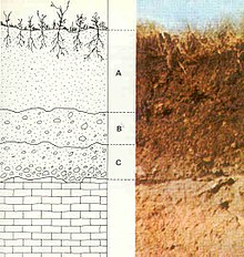 This is a diagram and related photograph of soil layers from bedrock to soil.
