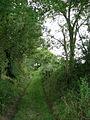 Exploring a sunken bridleway off Edgefield Street - geograph.org.uk - 546858.jpg