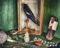 Fågel, fönsterfragment, maginnehåll, opiumpipa, ätpinnar m.m. i kuriosakabinettet - Skoklosters slott - 102662.tif