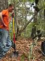FL Tree Army 2011 (5683742612) (2).jpg