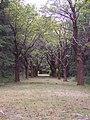 Farnsworth Cemetery.jpg