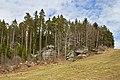 Felsgruppen an der Straße nach Haselbach 2013-04 NÖ-Naturdenkmal ZT-114.jpg
