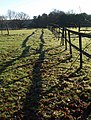Fence and shadow, Hiller Lane - geograph.org.uk - 1632861.jpg