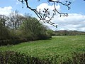 Fields and woodland near Nymet Rowland - geograph.org.uk - 162516.jpg