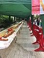 Fiestas de San Blas de Torrente año dos mil veinte 02.jpg