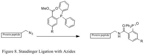 Figure 8. Staudinger Ligation with Azides.jpg