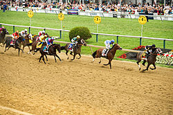 The Preakness Stakes are held each year in the Baltimore neighborhood of Pimlico.