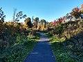 Fisher Hill Reservoir Park, Outer Trail.jpg