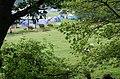 Fisherground Campsite through the trees - geograph.org.uk - 1337442.jpg