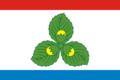 Flag of Krasnoznamensk (Kaliningrad oblast).png