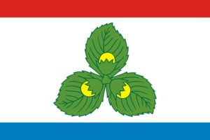Krasnoznamensky District - Image: Flag of Krasnoznamensk (Kaliningrad oblast)